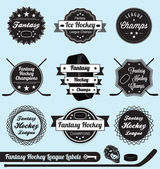 Vector Set: Fantasy Hockey League Labels and Icons — Stock Vector