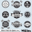 Stock Vector: Vector Set: Race Car Champion Labels and Badges