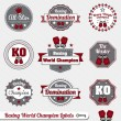 Vector Set: Boxing World Champion Labels and Icons — Stock Vector