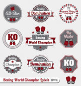 Vector Set: Boxing World Champion Labels and Icons — Stock vektor
