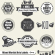 Vector Set: Mixed Marshal Arts Labels and Icons - Imagen vectorial