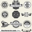 Vector Set: Mixed Marshal Arts Labels and Icons - Stock Vector