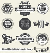 Vector Set: Mixed Marshal Arts Labels and Icons — Vetor de Stock