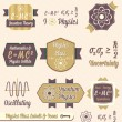 Vintage Physics Class Labels and Icons — Stock Vector
