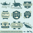 Stock Vector: Vector Set: Vintage Oceanography Class Labels and Icons