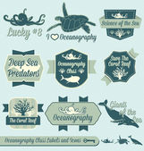 Vector Set: Vintage Oceanography Class Labels and Icons — Stock Vector