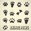 Stock Vector: Vector Set: Paw Prints of Wild and Domestic Animals