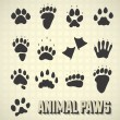 Vector Set: Paw Prints of Wild and Domestic Animals — Stock Vector #18392313