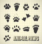 Vector Set: Paw Prints of Wild and Domestic Animals — Stockvektor