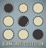 Vector Set: Vintage Blank Labels and Seals — Stock Vector