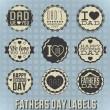 Vector Set: Vintage Happy Fathers Day Labels — Vecteur