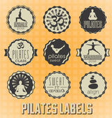Vector Set: Pilates Labels and Icons — Stock Vector