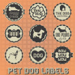 Stock Vector: Vector Set: Vintage Pet Dog Labels and Icons