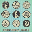 Vector Set: Vintage Pregnancy Labels and Icons — Stockvektor