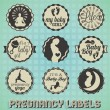 Vector Set: Vintage Pregnancy Labels and Icons — Stock Vector #22848302