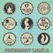 conjunto de vetores: rótulos de gravidez vintage e ícones — Vetorial Stock
