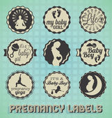 Vector Set: Vintage Pregnancy Labels and Icons — Stock Vector