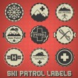 Vector Set: Vintage Ski Patrol Labels and Icons - Stok Vektör