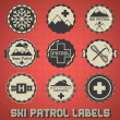 Vector Set: Vintage Ski Patrol Labels and Icons — Stock Vector
