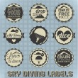 Royalty-Free Stock Vectorielle: Vector Set: Vintage Sky Diving Labels and Icons