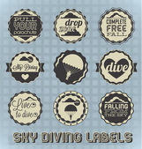Vector Set: Vintage Sky Diving Labels and Icons — Stock Vector