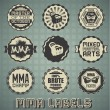 Vector Set: Vintage Style Mixed Martial Arts Labels — Stock Vector