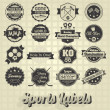 Vector Set: Mixed Sports Labels and Icons — Stok Vektör