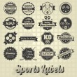 Vector Set: Mixed Sports Labels and Icons — Wektor stockowy