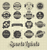 Vector Set: Mixed Sports Labels and Icons — Stock Vector