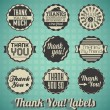 Vector Set: Vintage Thank You Labels and Icons — Stock Vector #23168558
