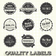 Vector Set: Vintage Premium Quality Labels and Icons — Stock Vector