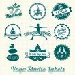 Vector Set: Yoga Studio Labels and Icons — Stok Vektör