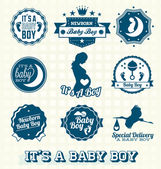Vector Set: It's A Baby Boy Labels and Icons — Stockvektor