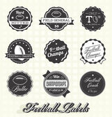 Vector Set: Football Champions Labels and Icons — Stock Vector