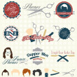 Vector Set: The Barbershop Labels and Icons — Stock Vector #26534661