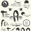 Vector Set: Retro Hair Salon Labels and Icons - Imagens vectoriais em stock