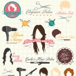 Vector Set: Retro Hair Salon Labels and Icons — Stock Vector