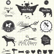Vector Set: Pet Grooming Labels — 图库矢量图片 #28553439