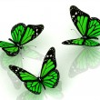 Stock Photo: Three beautiful green butterfly