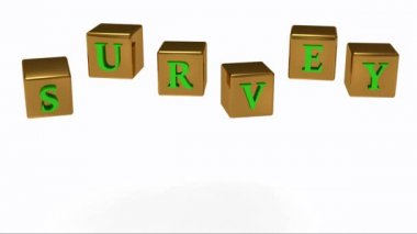 SURVEY inscription bright green letters on a gold rotating cubes — Stock Video