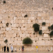 The Jerusalem wailing wall — Stock Photo #13333567