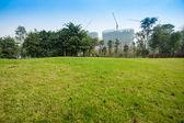 Terra di erba in un parco di chengdu, cina — Foto Stock