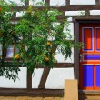 Royalty-Free Stock Photo: Colorful door and framework