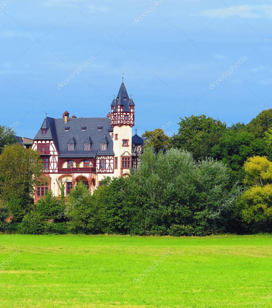 Little German castle between forest and meadow — Stock Photo #13915383