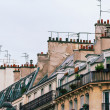 The famous Parisian rooftops — Foto Stock