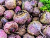 Beets (Beta vulgaris) — Stock Photo