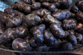 Truffle potatoes — Stock Photo