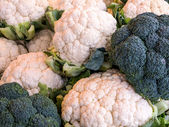 Cauliflower and Broccoli — Stock Photo