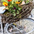 Spring decoration on the old bike — Stock Photo