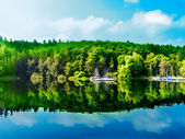 Green forest reflection in blue lake water — Stok fotoğraf